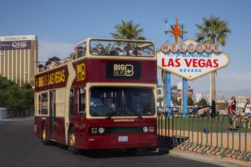 Hop-On, Hop-Off Bus Tours - Las Vegas