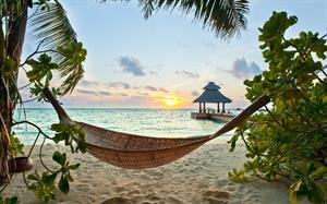 Honeymoon fund - Honeymoon registry Fiji. . Bali. . Rarotonga. . anywhere tropical!