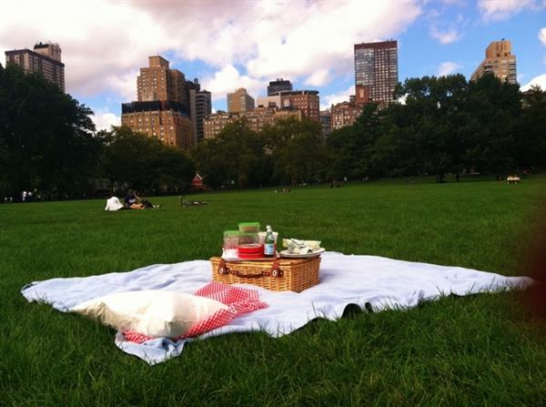 A traditional Central Park Lakeside picnic