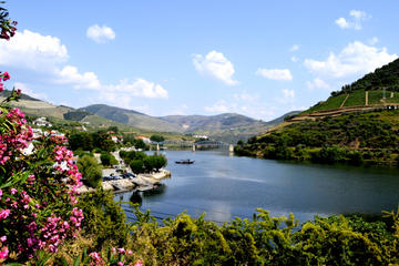 Winery tour from Porto to Douro Valley