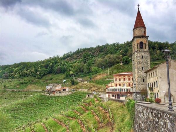 Wine Tour & Dinner in Prosecco
