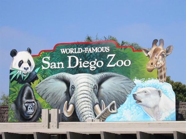 2 x passes to San Diego Zoo & Safari