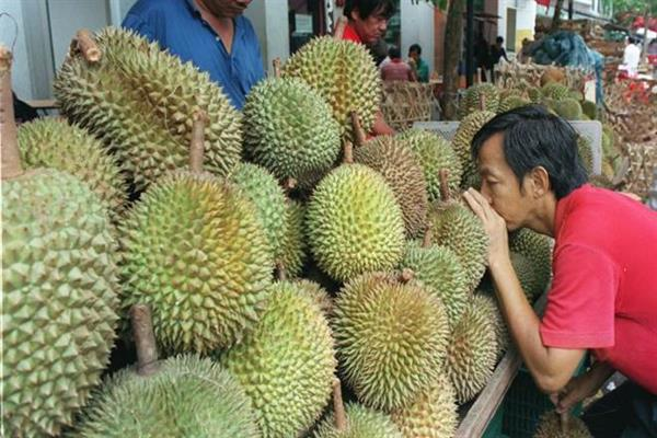 Buy us a durian!