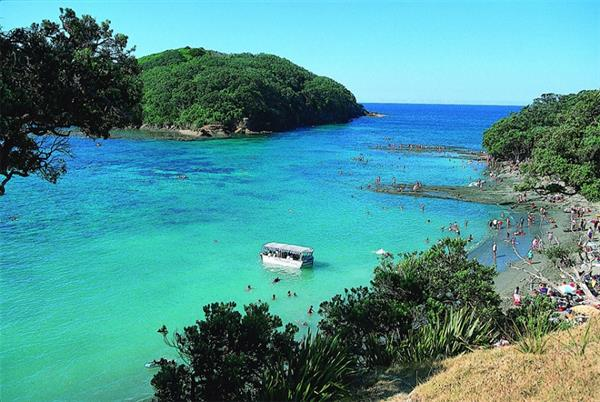 Snorkelling at Goat Island Marine Reserve