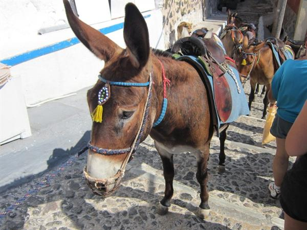 2. Santorini - Day trip