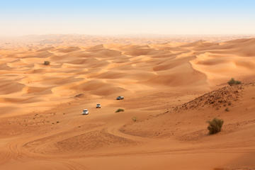 4X4 Desert safari, Camel Ride, BBQ Dinner and Belly Dancing