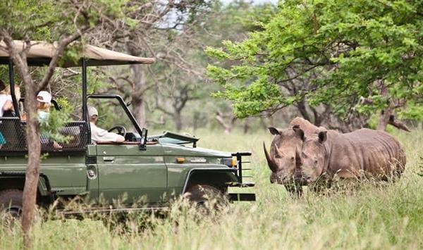 Safari Lodge Luxury