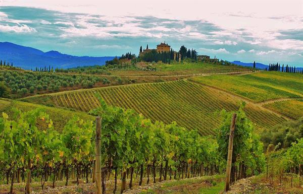 Stay at a Tuscan winery