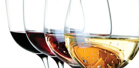 Tuscan region wine tour & tasting