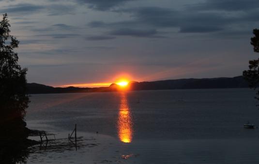 See the Midnight Sun