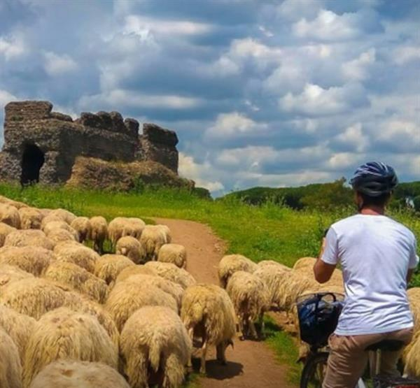 Ancient Roman Road and Aqueducts by Bike