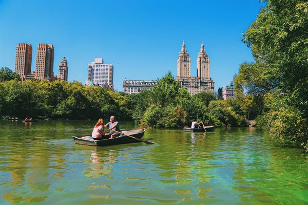 Row-boat hire & picnic in Central Park