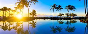 Tom & Soph's Honeymoon Fund - Honeymoon registry Hawaii