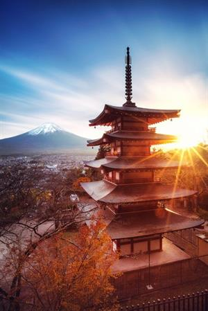 The Miles' Adventure in The Land of the Rising Sun - Honeymoon registry Japan