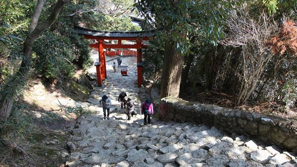 Kumano Kodo Pilgrimage Tour