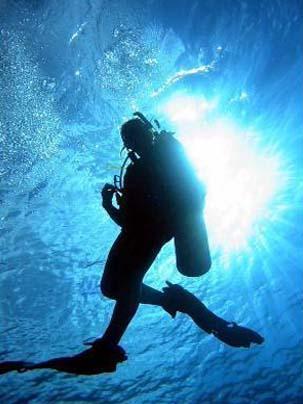 Scuba Diving: 1 dive