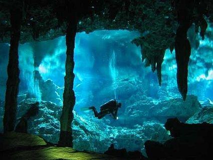 Scuba Diving: Dive 2