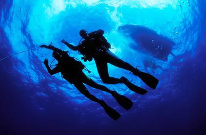 Scuba Diving: Dive 6