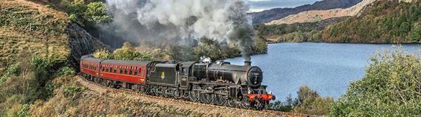 Jacobite steam train (Hogwarts Express) ticket