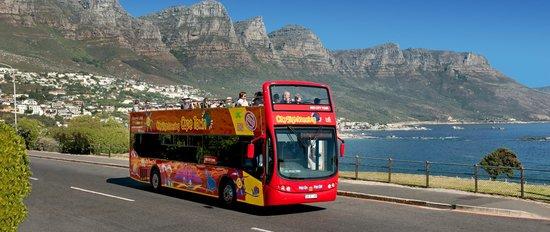 Hop on Hop off bus trip Cape Town