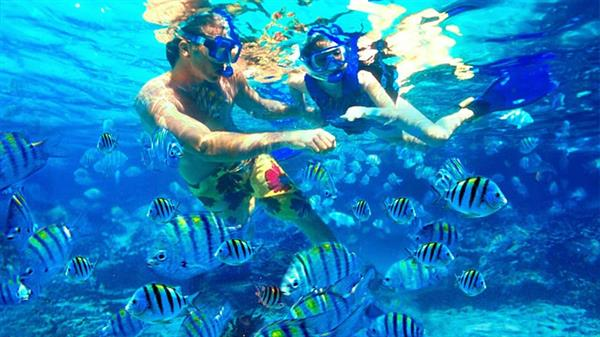 Snorkelling adventures