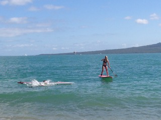 Paddle board hire