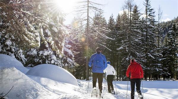 1 Snowshoe Excursion