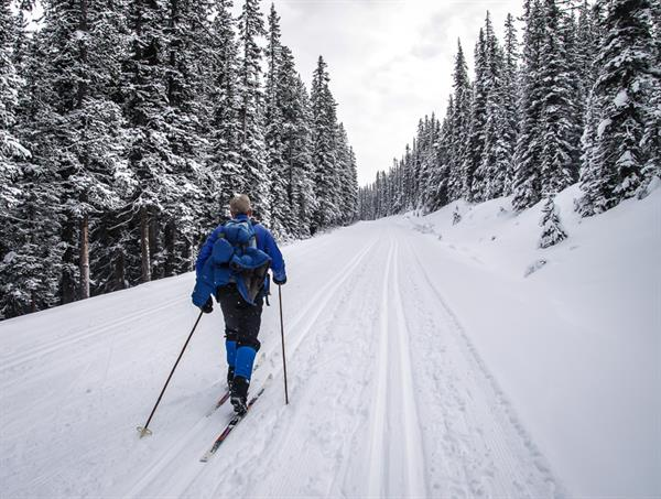 1 Cross-Country Skiing Excursion