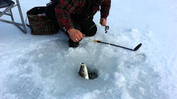 1 Ice Fishing Excursion